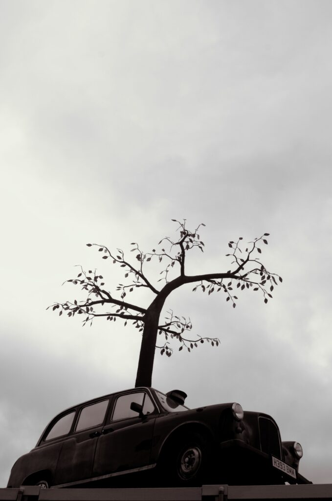 Andrew Baldwin's Cab Tree at Trinity Buoy Wharf, London